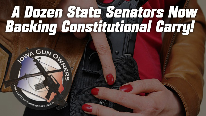 A Dozen State Senators Now Backing Constitutional Carry!