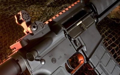 Tell Lawmakers to Leave Our AR-15's Alone!